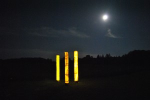 Forest of Light Columns; INSTALLATION shots