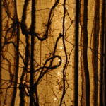 Ivory Net Column (in process, detail)