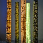 006-Forest of Columns (alight at dusk)_Julia White