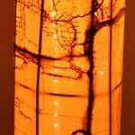 Honey Light Column alight (detail)